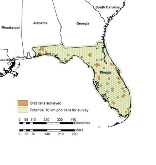The Nightjar Survey investigates the role of habitats on populations