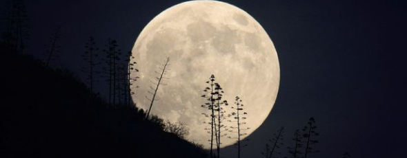 Bad Moon Rising; The 2015 Survey Dates are Selected